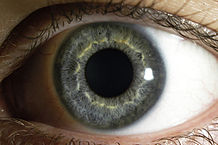 A Stranger's Eyes (image copyright Eric Wiessner, WikiCommons)